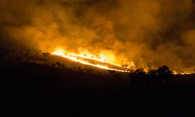 Carbon emissions from Australian blazes near Amazon fire levels