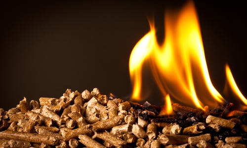 Burning forests to make energy: EU and world grapple with biomass science