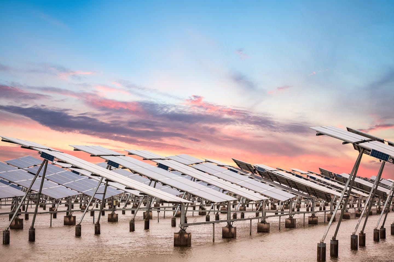 solar farm china