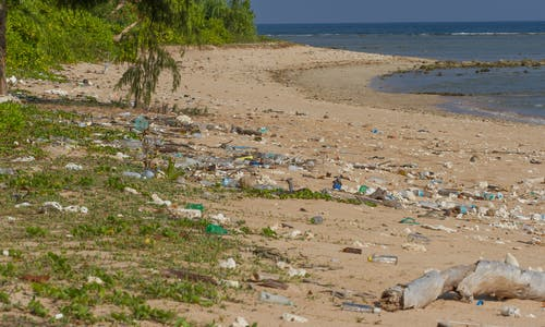 Are microplastics ending up in biodiversity hotspots in the ocean?