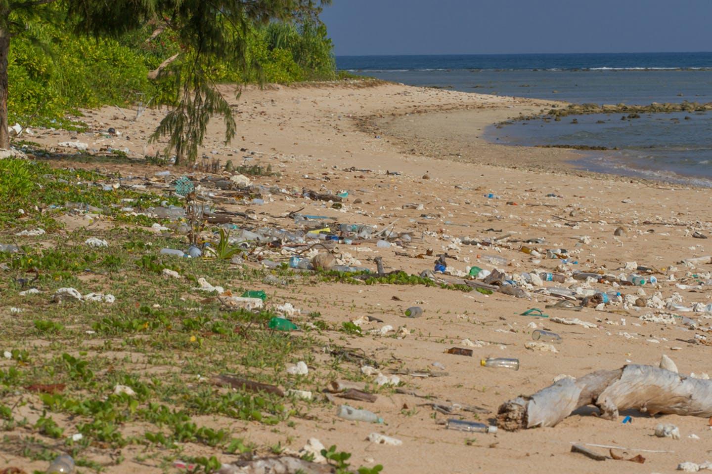 plastic pollution Little Andaman in the Indian Ocean