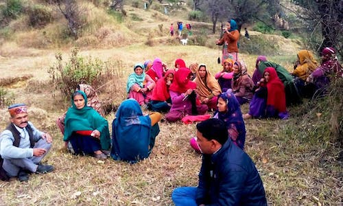 Tree planting pushes out pastoralists in the Himalayas