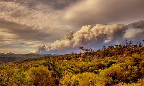 Fire-scorched Australia's hottest and driest year on record leaves government unmoved