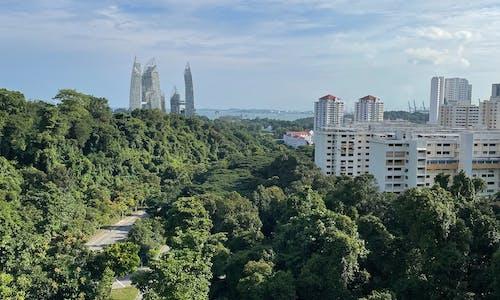 Anti-environmental valuesrevealedin Singapore's history textbooks
