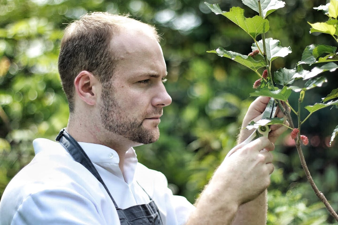 24 hours with...Farm-to-table restaurant head chef, Oliver Truesdale Jutras