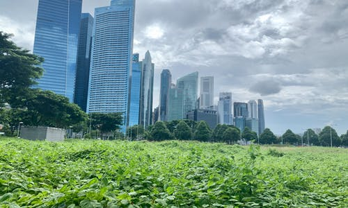 Why Asian banks need to put sustainable finance clearly in their sights
