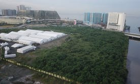 Manila's mega Covid-19 vaccination site is a threat to urban forest and access to vaccines, activists say