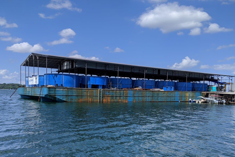 Singapore Aquaculture Technologies' fish farm