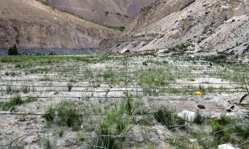 Zero-carbon water pumps turn Pakistan's barren mountains green