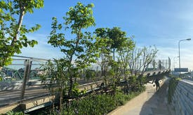 Bangkok on track for more green spaces with park on old train line