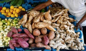 Silver lining in the health crisis? Less food waste