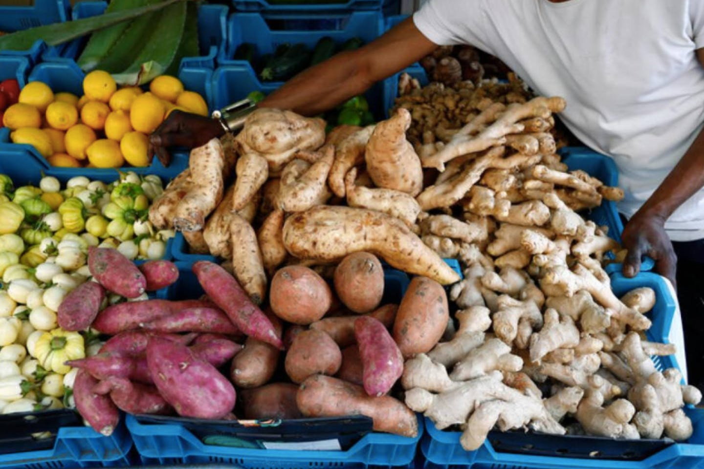 Vegetables and fruits, including manioc and sweet potatoes, are displayed in a grocery store