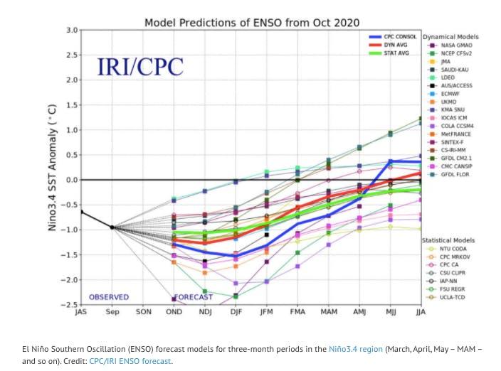 warm year 2020c