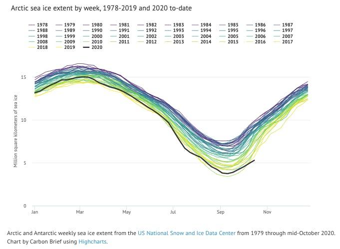 warm year 202i