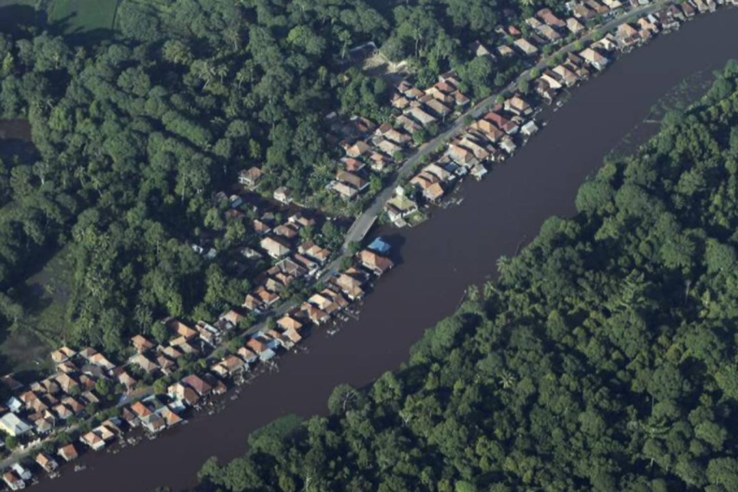 houses near a forest in Indonesia's South Sumatra province