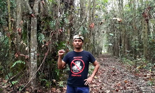 Zoning of rare Malaysian peat forest for property development sparks outcry