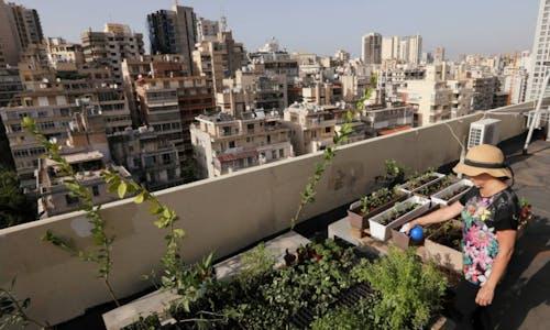 Rooftops to railways: neighbourhoods race to hit net zero climate goals