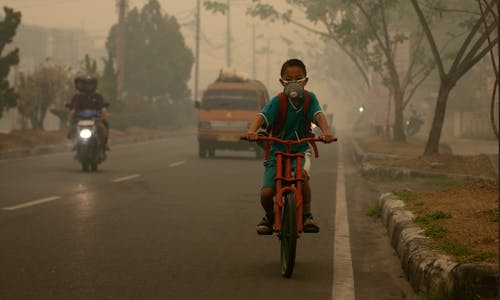 Jakarta court finds president, governor liable for city's air pollution troubles