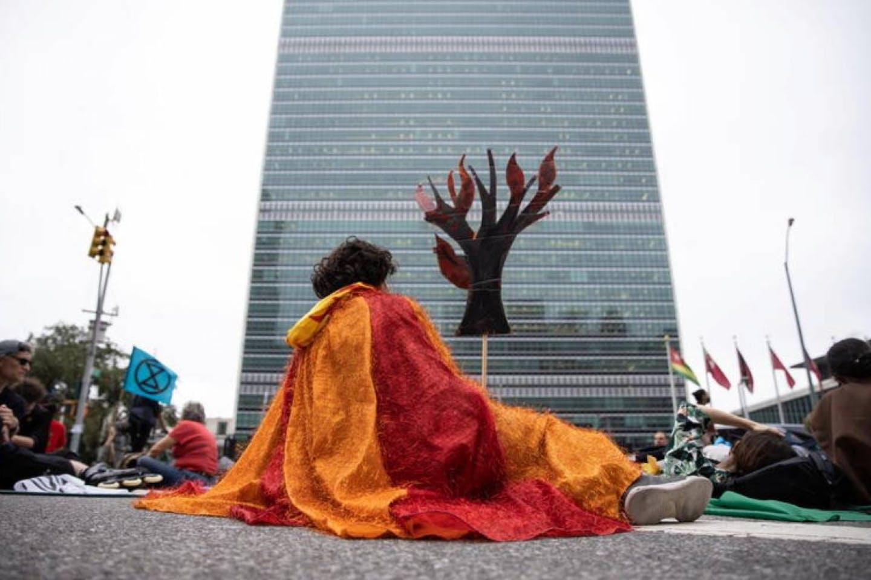 Protester - extinction rebellion