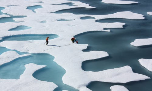 Arctic sea ice summer minimum in 2021 is '12th lowest' on record