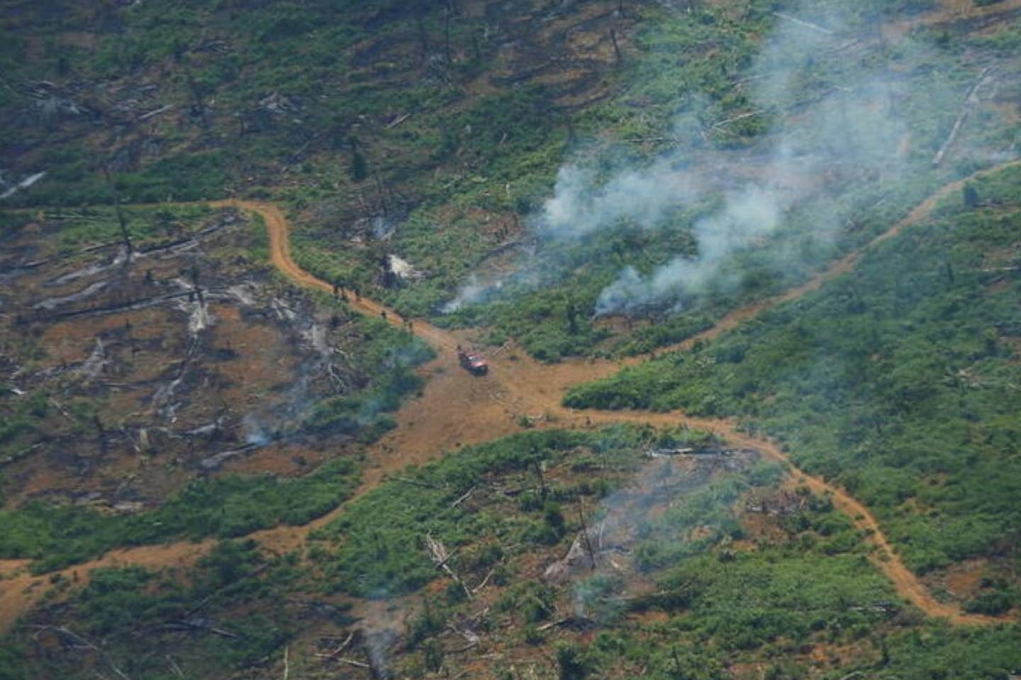aerial view of deforested plot in amazon