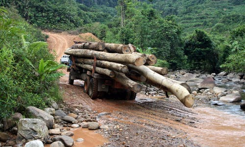 Malaysia's Indigenous Penan block roads to end logging in Borneo