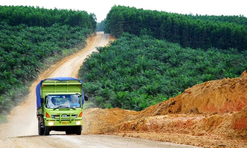 Green groups demand scrapping of US$300 million loan offer for Borneo road project