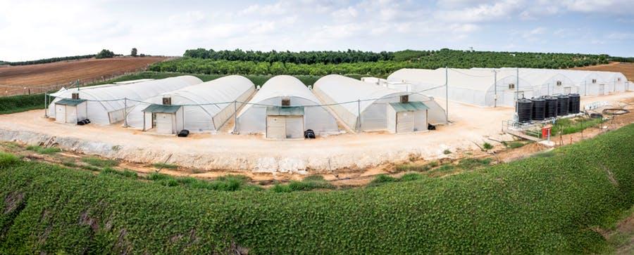 Simpliigood production facility