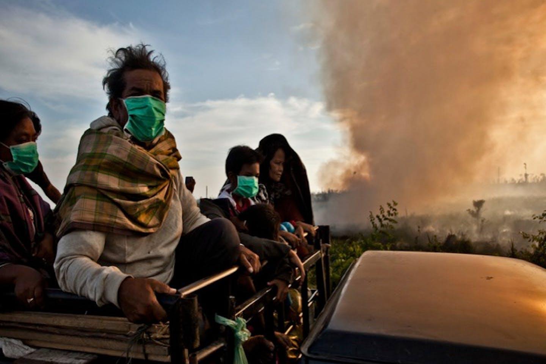 smoke from peatland riau indonesia