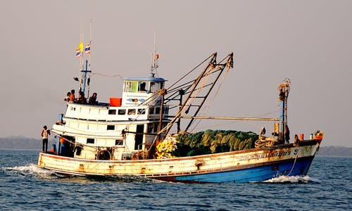 The impact of organised crime in fisheries extends far beyond the ocean
