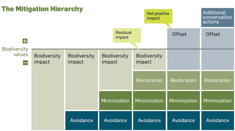 The Mitigation Hierarchy UN Global Compact and IUCN 2012.png?auto=format&dpr=2&fit=max&ixlib=django 1.2