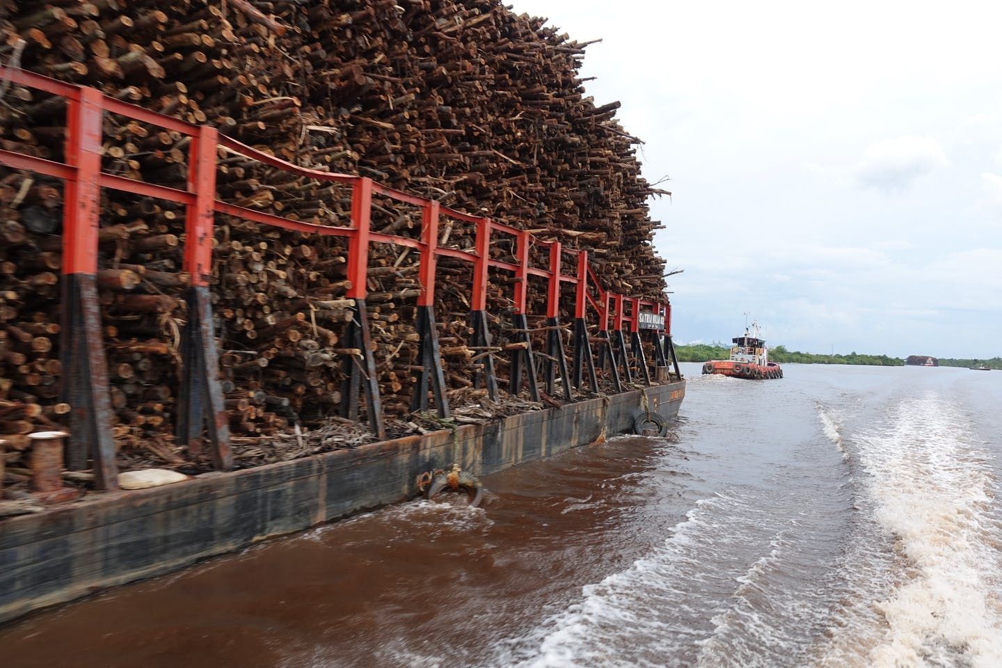 Logs being transported down a river fromOgan Komering Ilir paper millSouth Sumatra, Indonesia. Image: Robin Hicks/Eco-Business