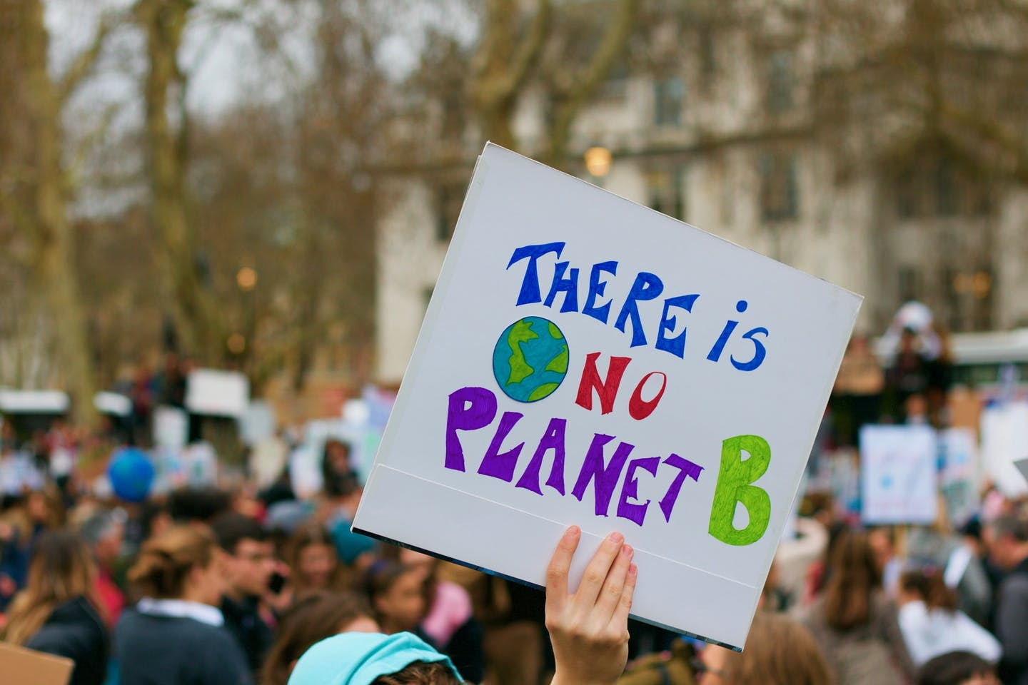 there is no planet B image