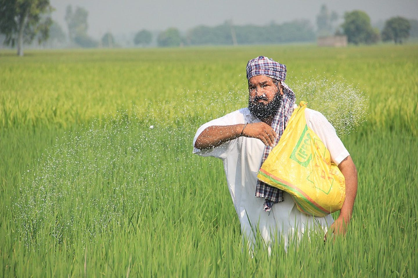 farmer using fertiliser on field