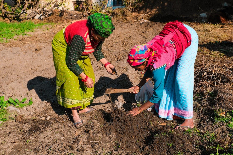 indian farmers women