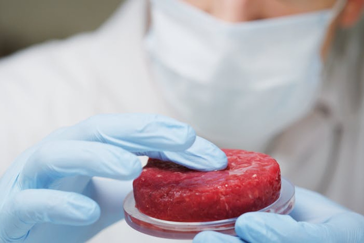Cultured meat? This could create more problems than it solves | Opinion |  Eco-Business | Asia Pacific