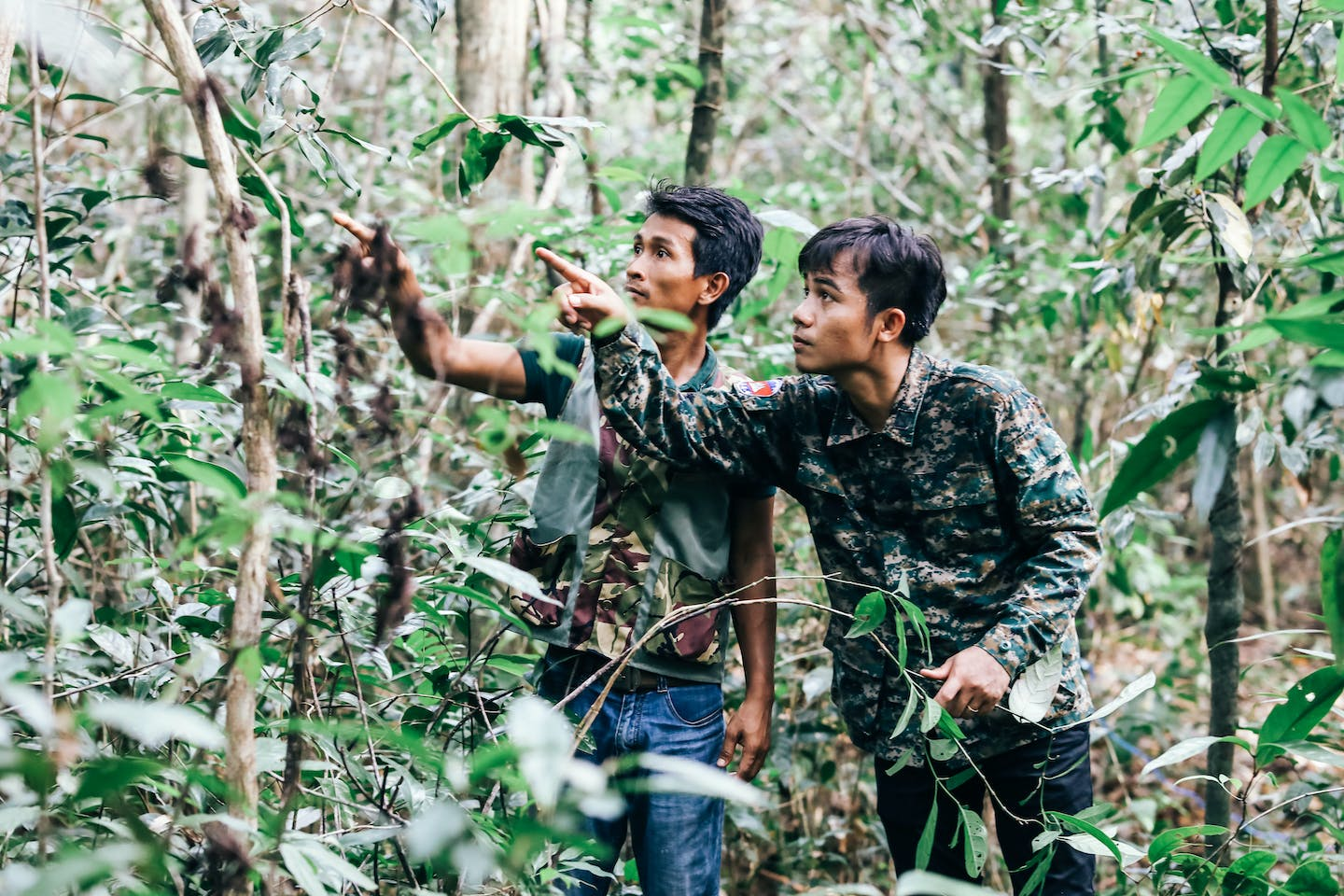 Chefs scour the forest for ingredients to cook with at Cambodian luxury resort Shinta Mani Wild. Image: Marissa Carruthers