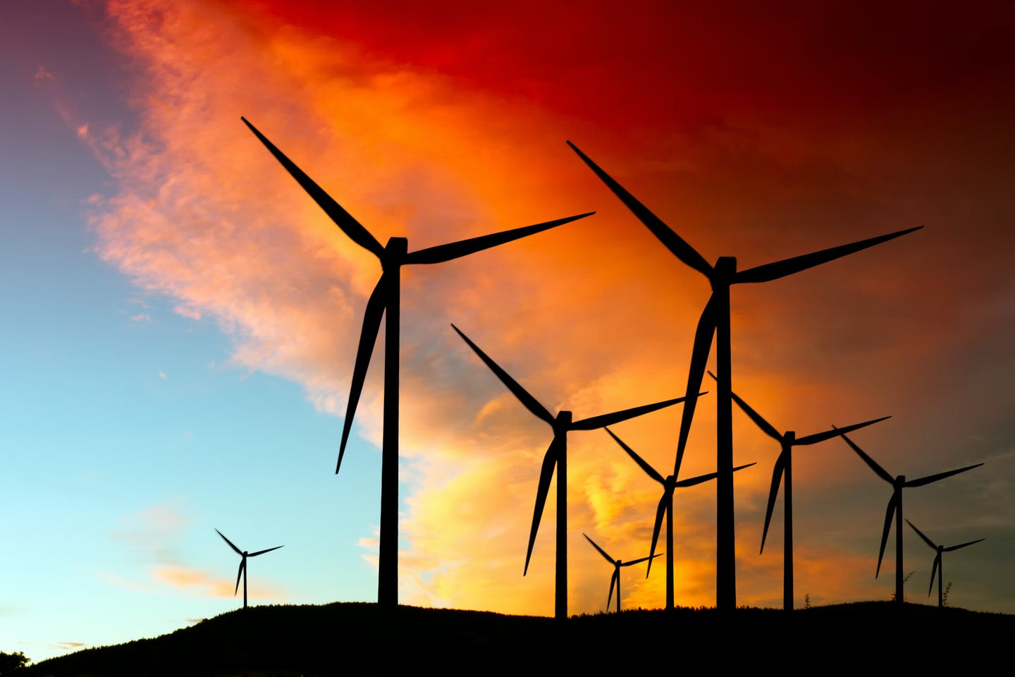 Wind farm, energy transition outlook