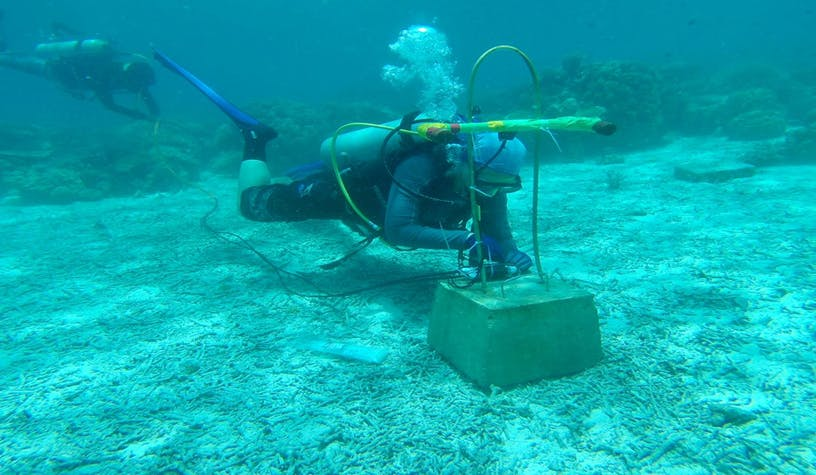 A blast detector is installed by a diver in the seabed in the waters of Sabah