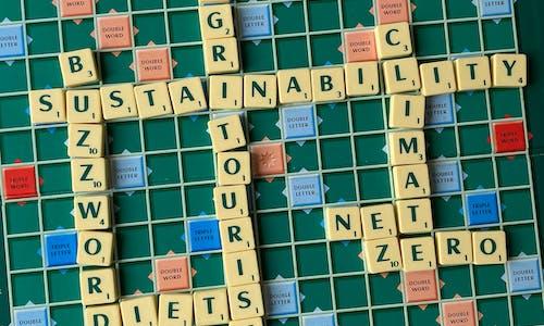 16 sustainability buzzwords of 2020
