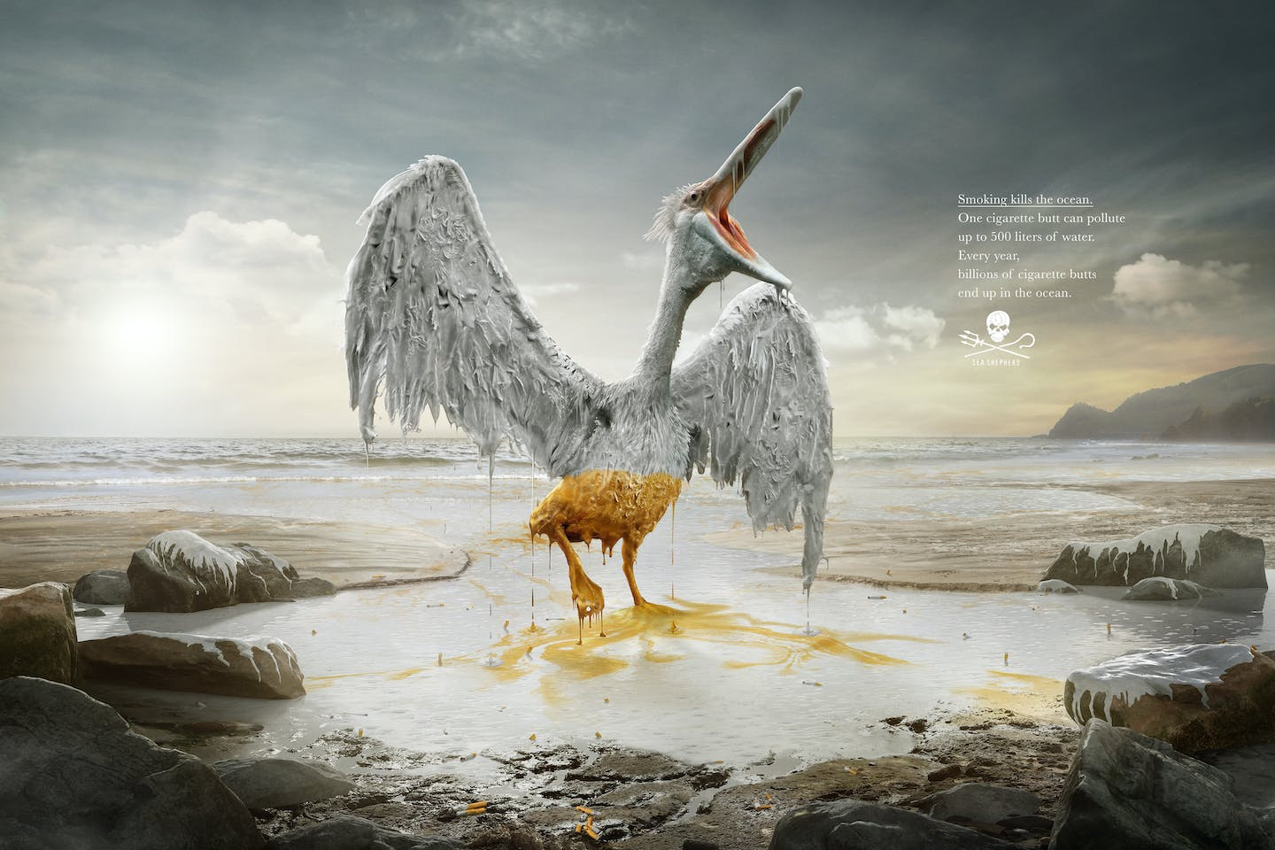 An advertisement for green group Sea Shepherd highlights the ecosystem damage of cigarette butt pollution to mark World Oceans Day. A single cigarette can pollute 500 litres of water, the ad warns. Image: Sea Shepherd