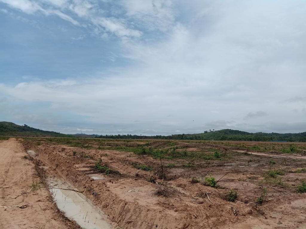 Land bulldozed by HAGL near Mass Village, Ratanakiri