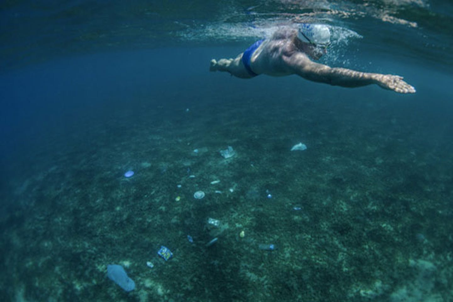 swimming with plastic