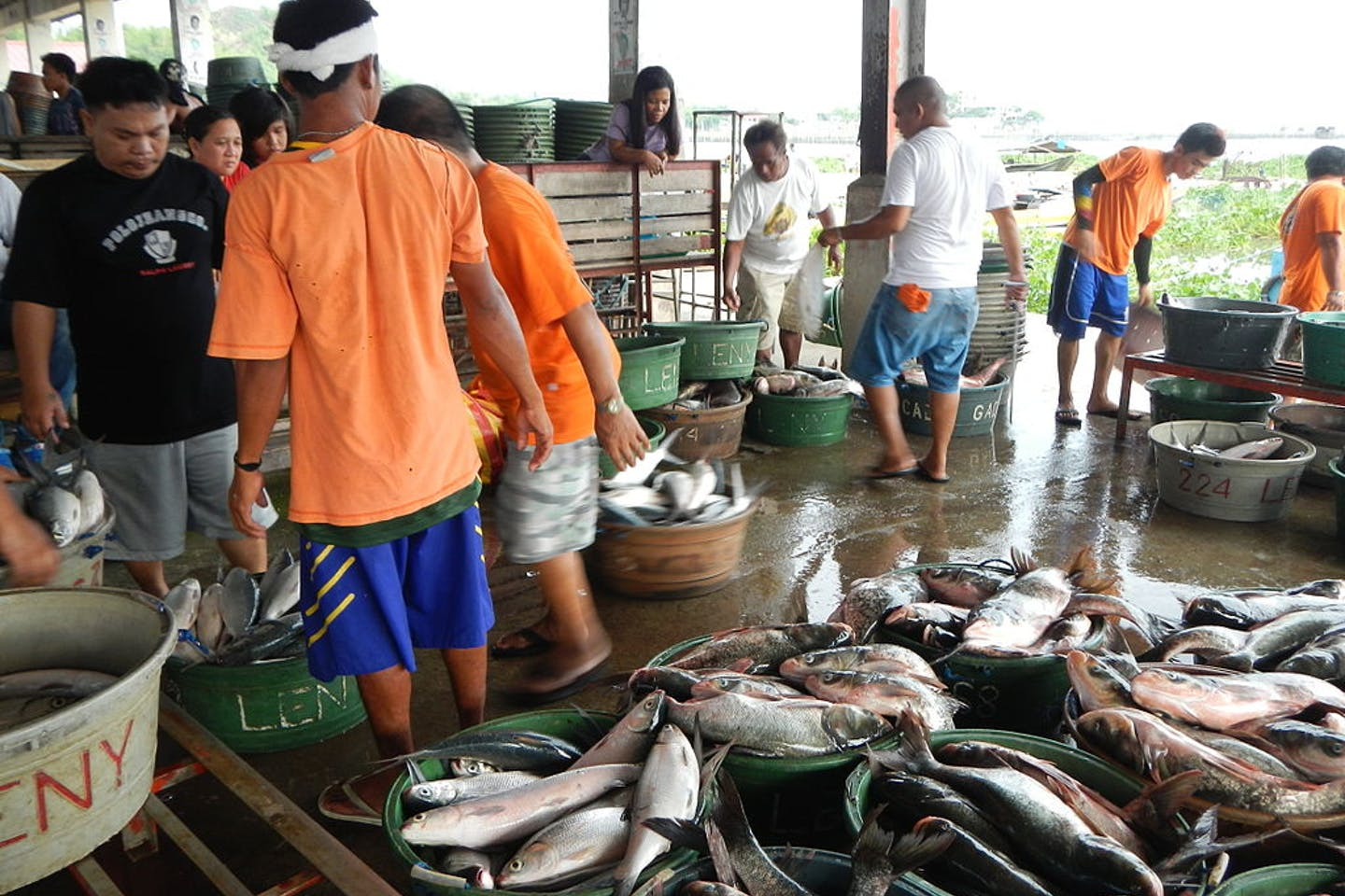 fish markets in the philippines