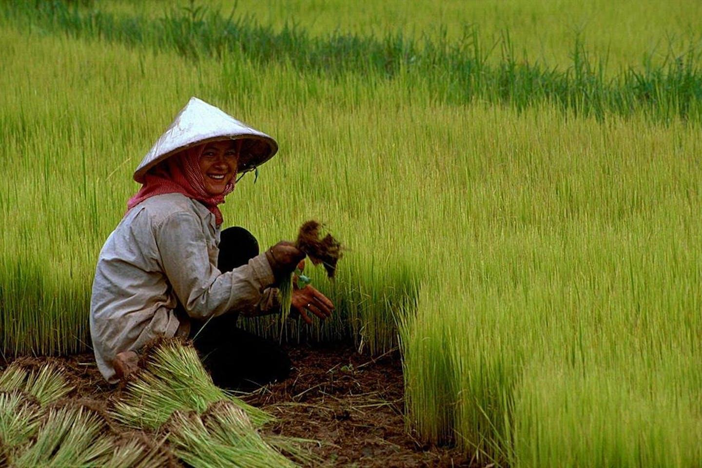 cambodian farmers2