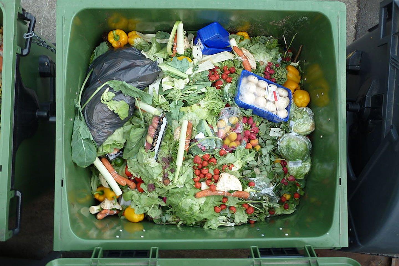 food waste tr