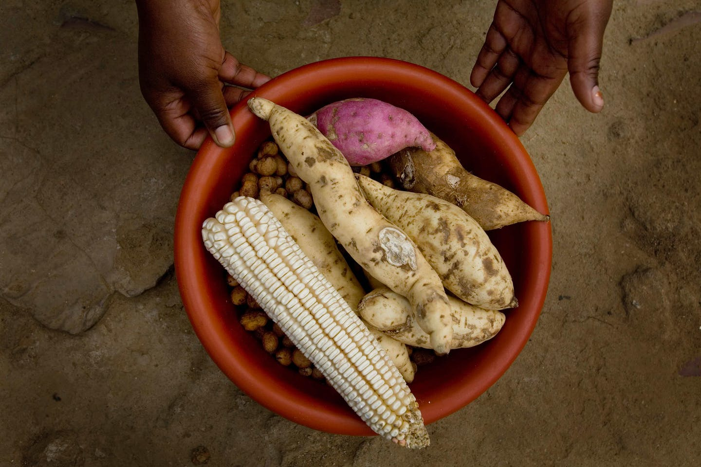 food security in Harare