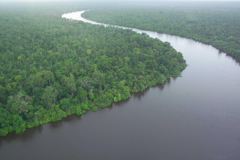 indonesia kalimantan peat river