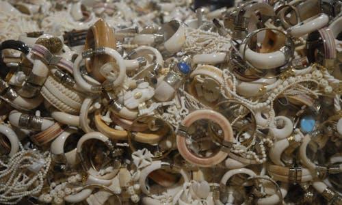 Hong Kong to ban ivory trade by 2021