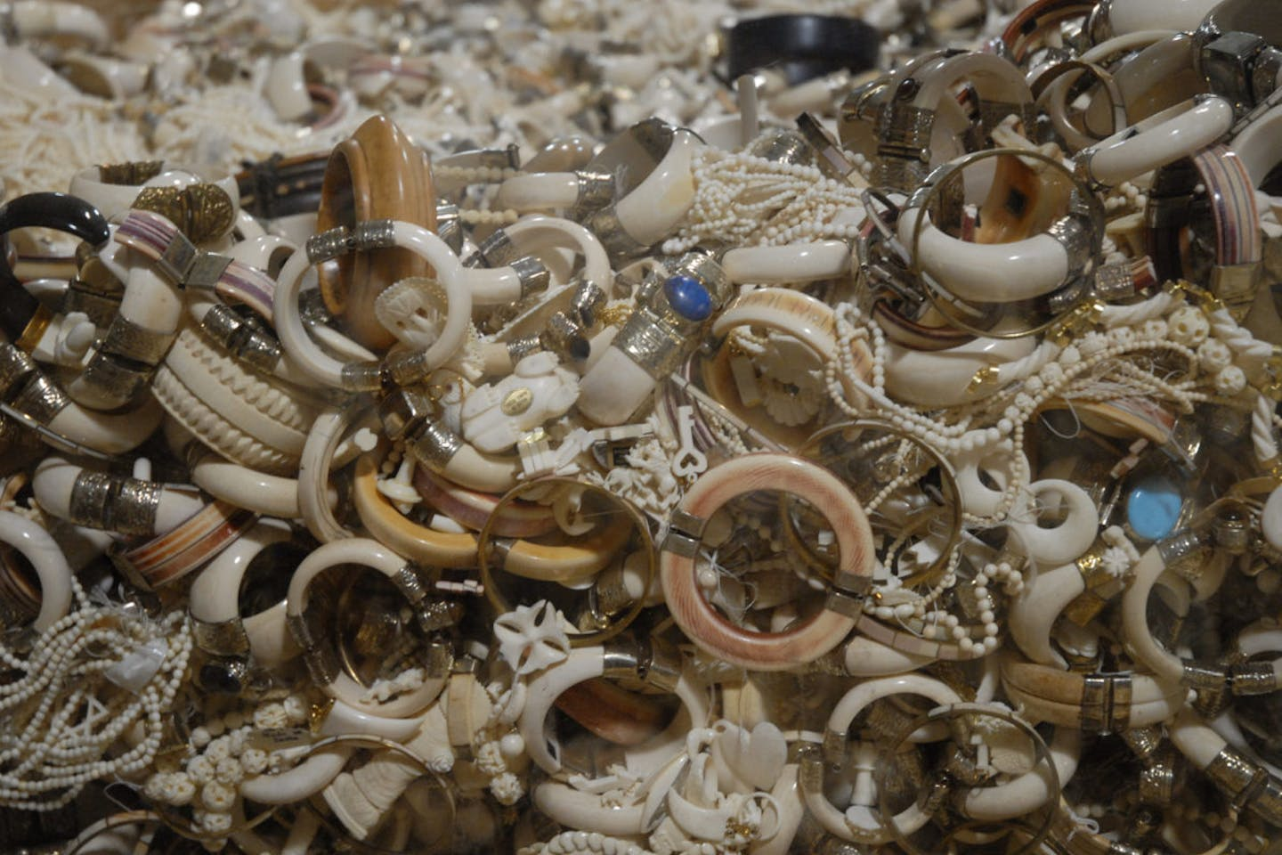 HK Ivory Trade soon to stop